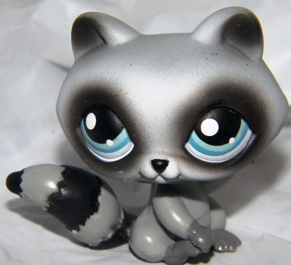 Littlest Pet Shop~#196~Raccoon~Gray Black~Blue Dot Eyes