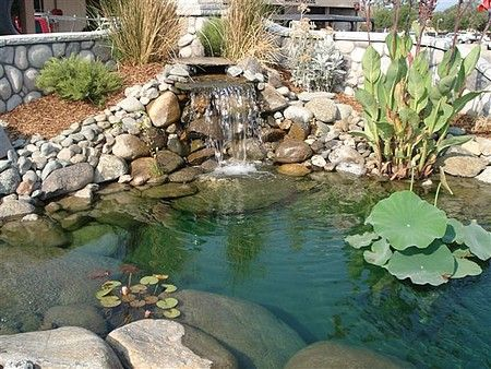 Top 25 ideas about Pond Ideas on Pinterest Natural waterfalls