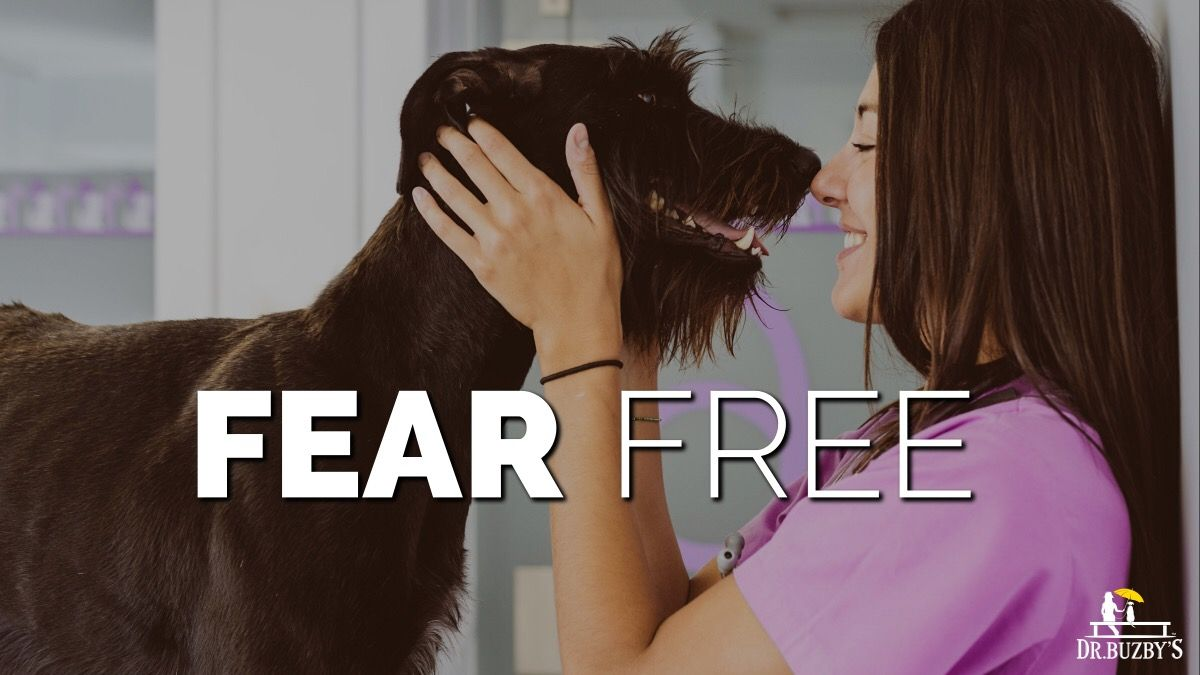 Fear Free: Easier Vet Visits, Happier, Healthier Pets with
