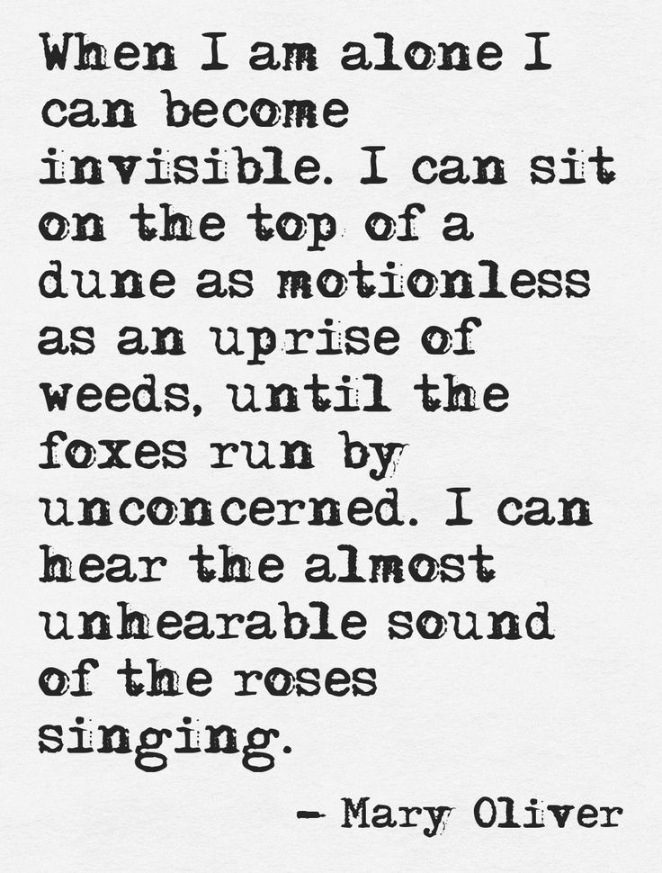 When I Am Alone I Can Become Invisible. I Can Sit On The Top Of A Dune As  Motionless As An Uprise Of Weeds, Until The Foxes Run By Unconcerned.