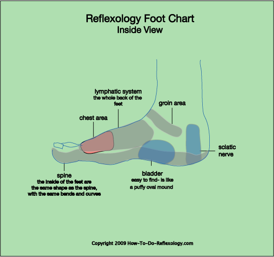 reflexology foot map diagrams charts including step by. Black Bedroom Furniture Sets. Home Design Ideas