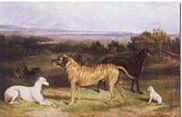 John Paul (artist) - Wikipedia, the free encyclopedia