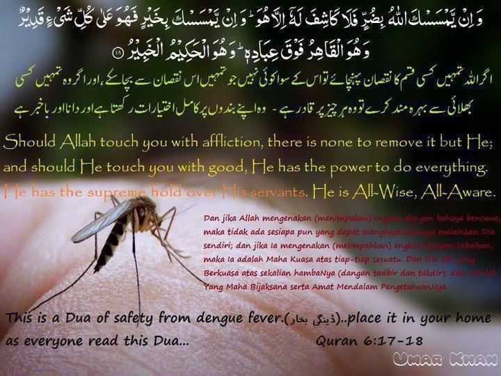 Cure of Dangue fever from Quran the holy revelation