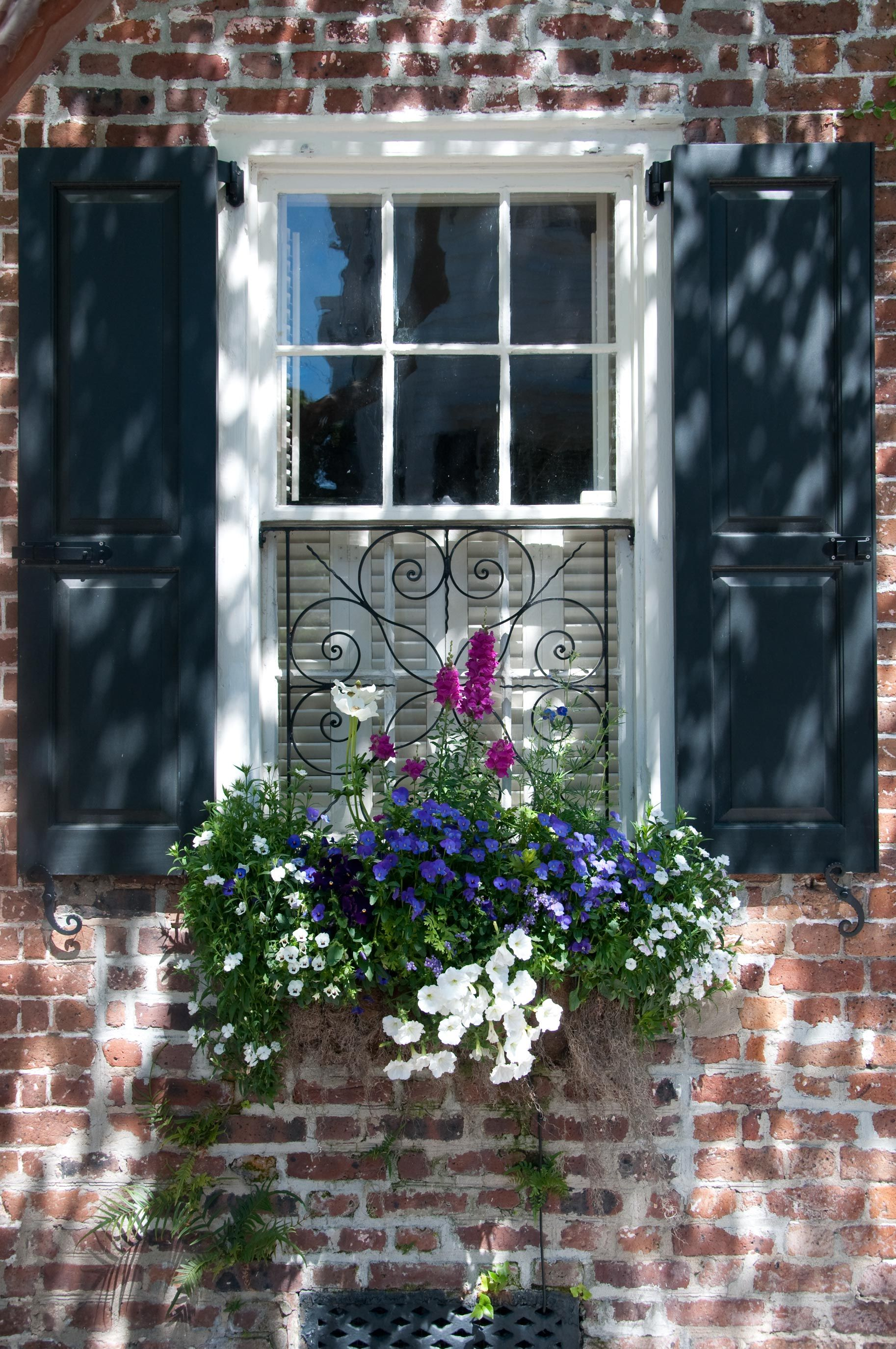 Love shutter color and old brick perfection garten - Topfpflanzen garten ...