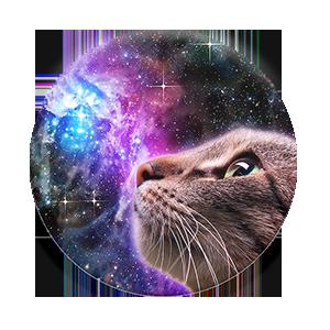 Cosmic Kitten Popsockets Popsockets Phones Kittens