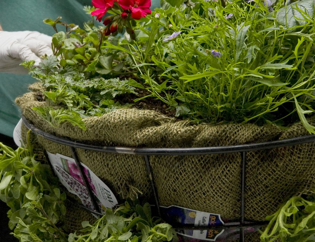 Love The Idea Of Using Burlap To Line Wire Hanging Baskets Instead Of Those Expensive Coconut Husk Liners Plants Garden Nook Mosses Basket
