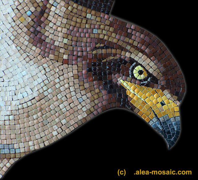 eagle, aigle, Adler   - detail by aleamosaic, via Flickr