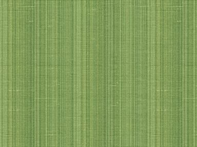 Brunschwig & Fils CASCADE STRIE EMERALD 8013138.53 - Brunschwig & Fils - Bethpage, NY, 8013138.53,Brunschwig & Fils,Silk,Green,Green,S,Up The Bolt,India,Stripes,Upholstery,Yes,Brunschwig & Fils,No,Hommage,CASCADE STRIE EMERALD