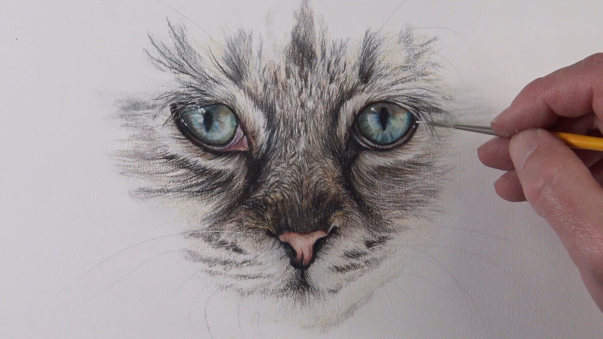 How to Draw Cat Eyes with Colored Pencils Eye drawing