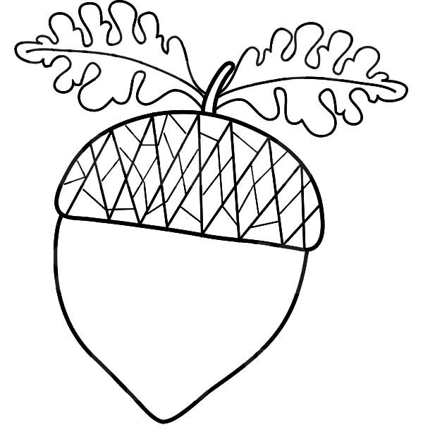 Acorn With Oak Leaf Coloring Pages Leaf Coloring Page Leaf
