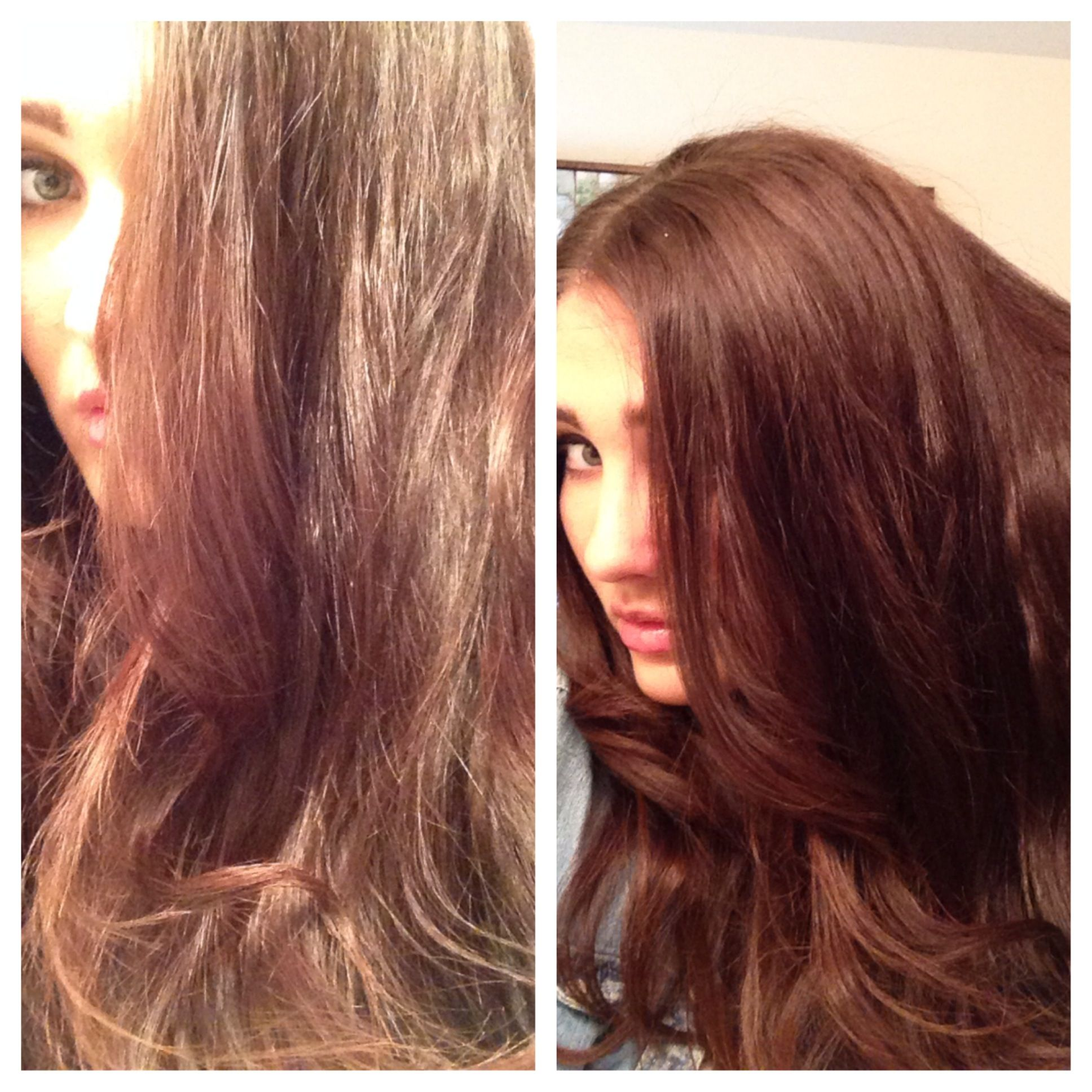 How To Color Your Hair With Henna Non Toxic Hair Color