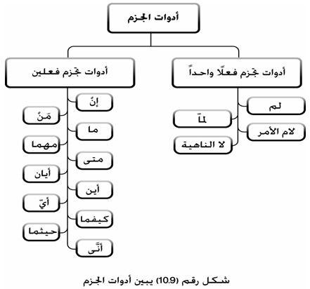 حروف الجزم Learn Arabic Language Arabic Language Arabic Lessons