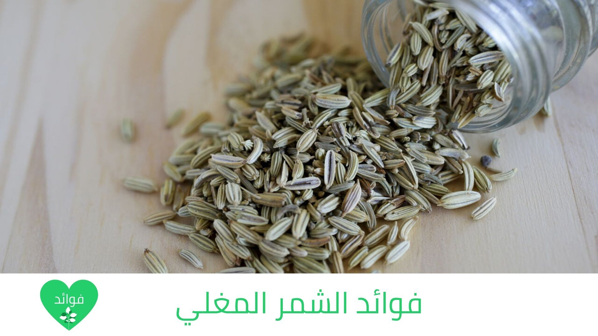 فوائد الشمر المغلي فوائد متعددة وهامة للتخسيس والقولون وأكثر How To Dry Basil Herbs Dried