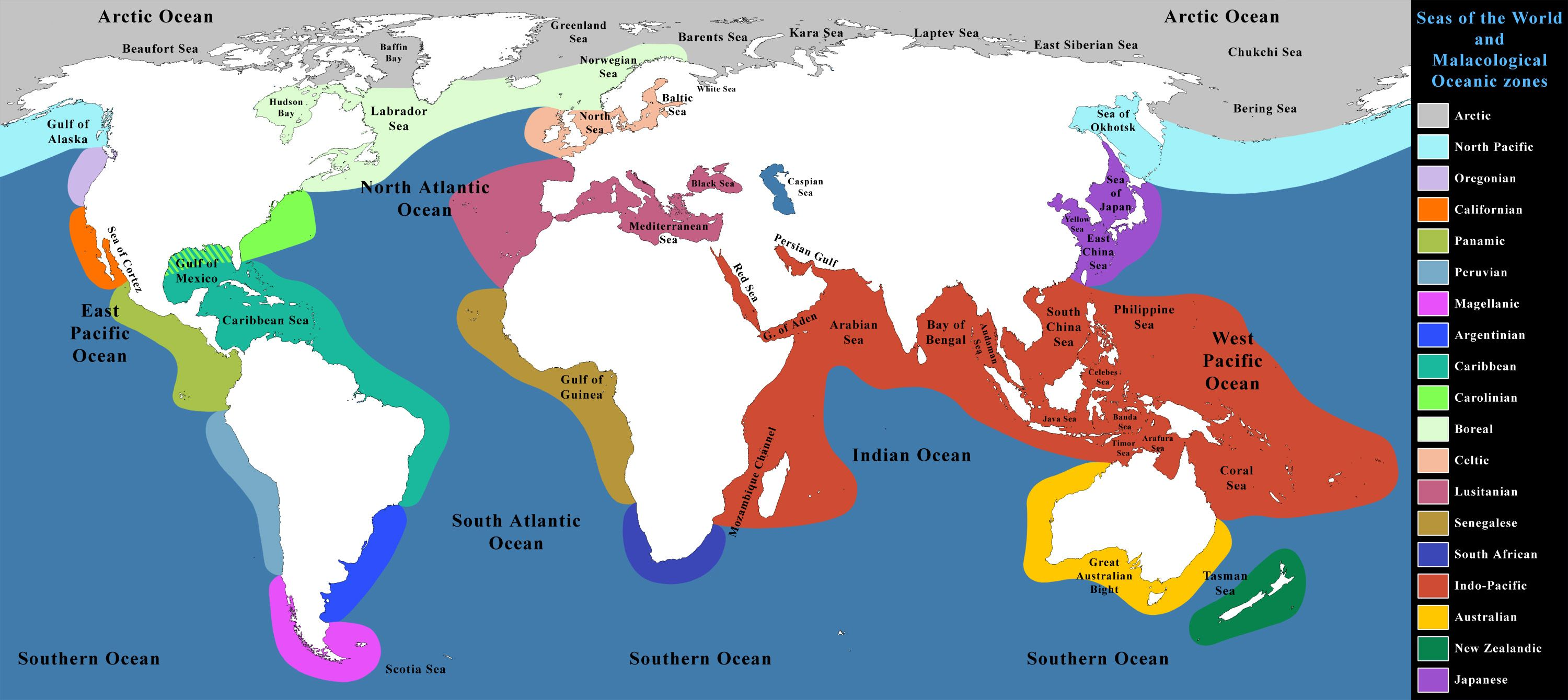 Seas of the world and malacological zones world map oceans seas of the world and malacological zones world map oceans gumiabroncs Gallery