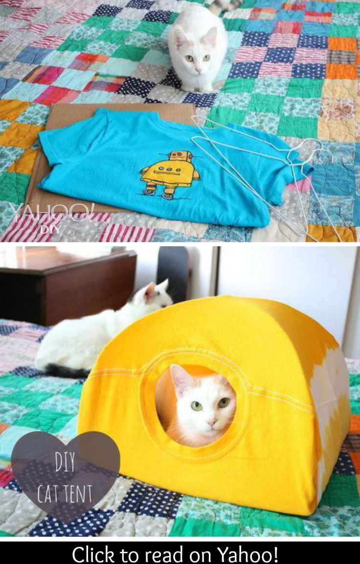 Quick \'n Easy T-Shirt Cat Tent | Pinterest | Cat tent, Tents and Cat