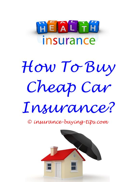Insurance Quote Gorgeous Where To Buy Obamacare Insurance  Car Insurance Quote Before Buying . 2017