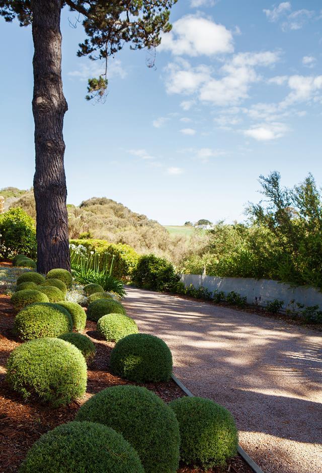 Mediterranean Style Garden In The Mornington Peninsula Sydney Gardens Mediterranean Style Bulbs Garden Design