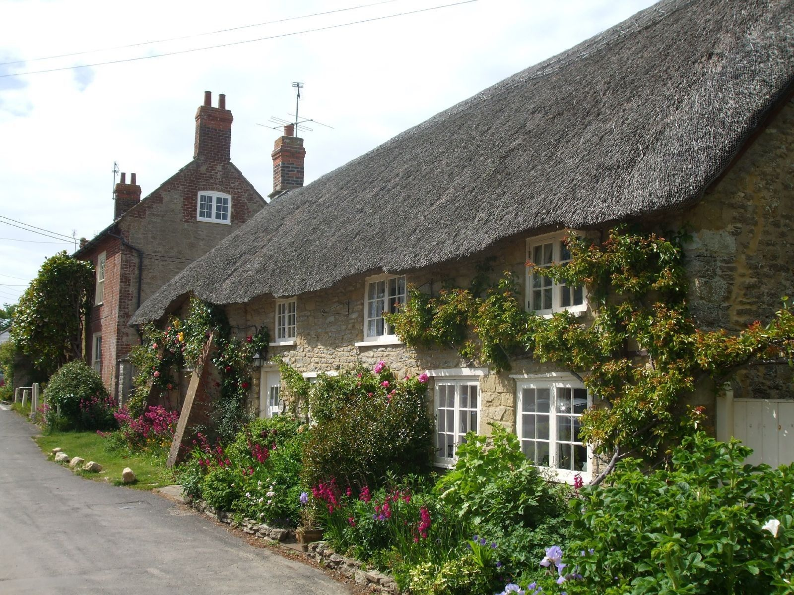 Image result for Thatch finishing