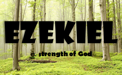 Image result for Ezekiel name