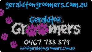 the number one place to go to get your pet groomed!!! - Geraldton Groomers, Pet Groomers, Geraldton, WA, 6530 - TrueLocal