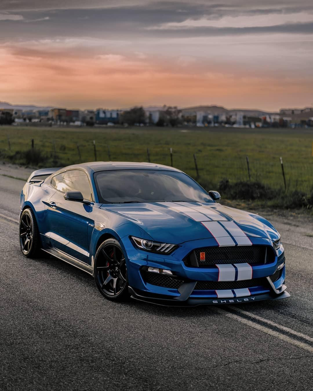 Be The Envy Shelby Gt350 Mustang Gt 350 Mustang Cars Ford Mustang Shelby