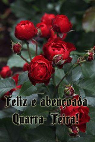 Pin De Raimunda Em Feliz Quarta Feira Com Imagens Flores