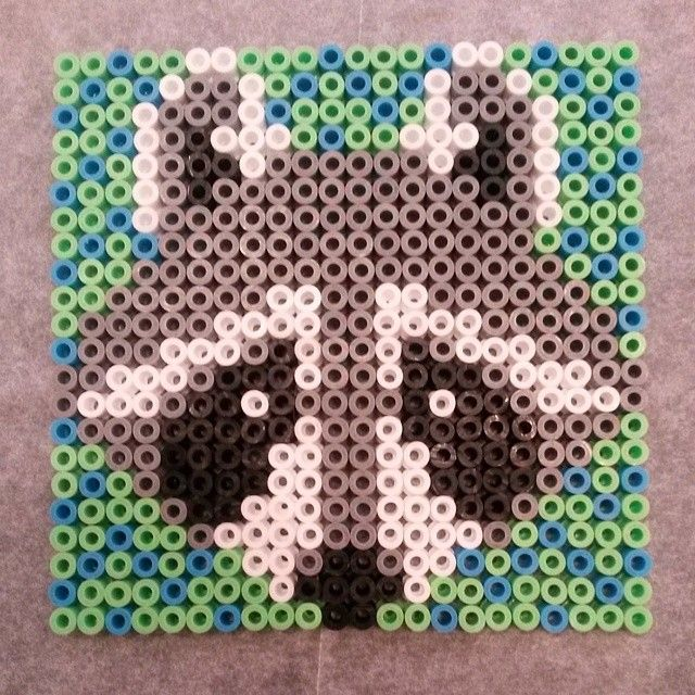 Racoon hama perler by flopse