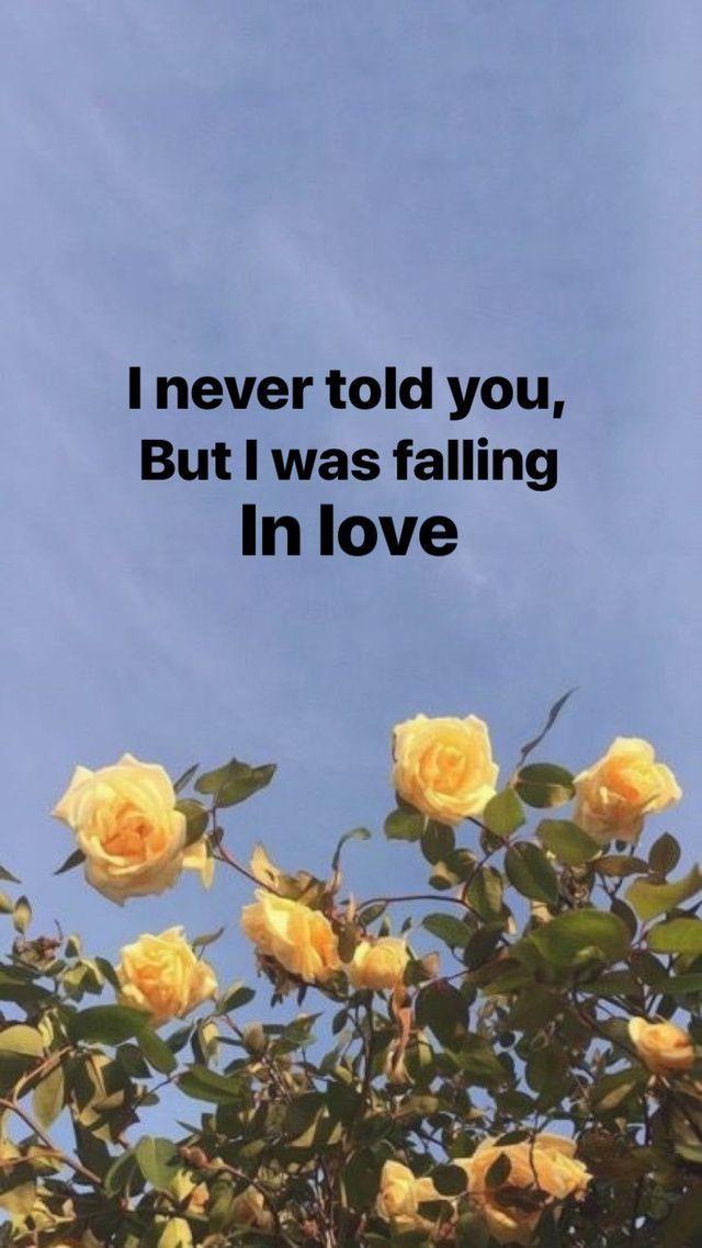 @emileelaii - Zahrahhhhh -  - #Couple