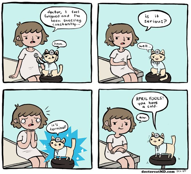 Doctor Cat - Doctor Cat has a poor sense of humor...this is a silly cartoon that always makes me giggle! Check it out at  doctorcatmd.com
