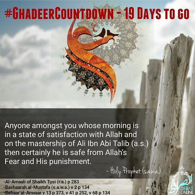 Who is safe from Allahs Fear and His punishment? #GhadeerCountdown #19DaysToGo #ImamAli #SeratOnline