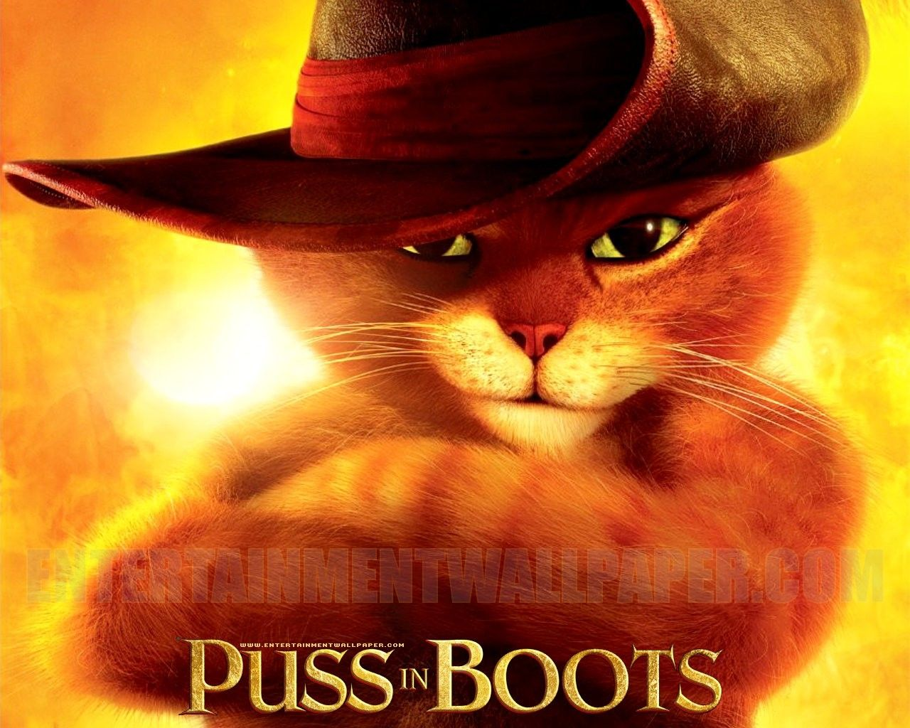 Pin On Puss N Boots