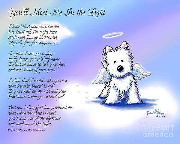 Angel Westie With Poem Art Print by Kim Niles. All prints are professionally printed, packaged, and shipped within 3 - 4 business days. Choose from multiple sizes and hundreds of frame and mat options.