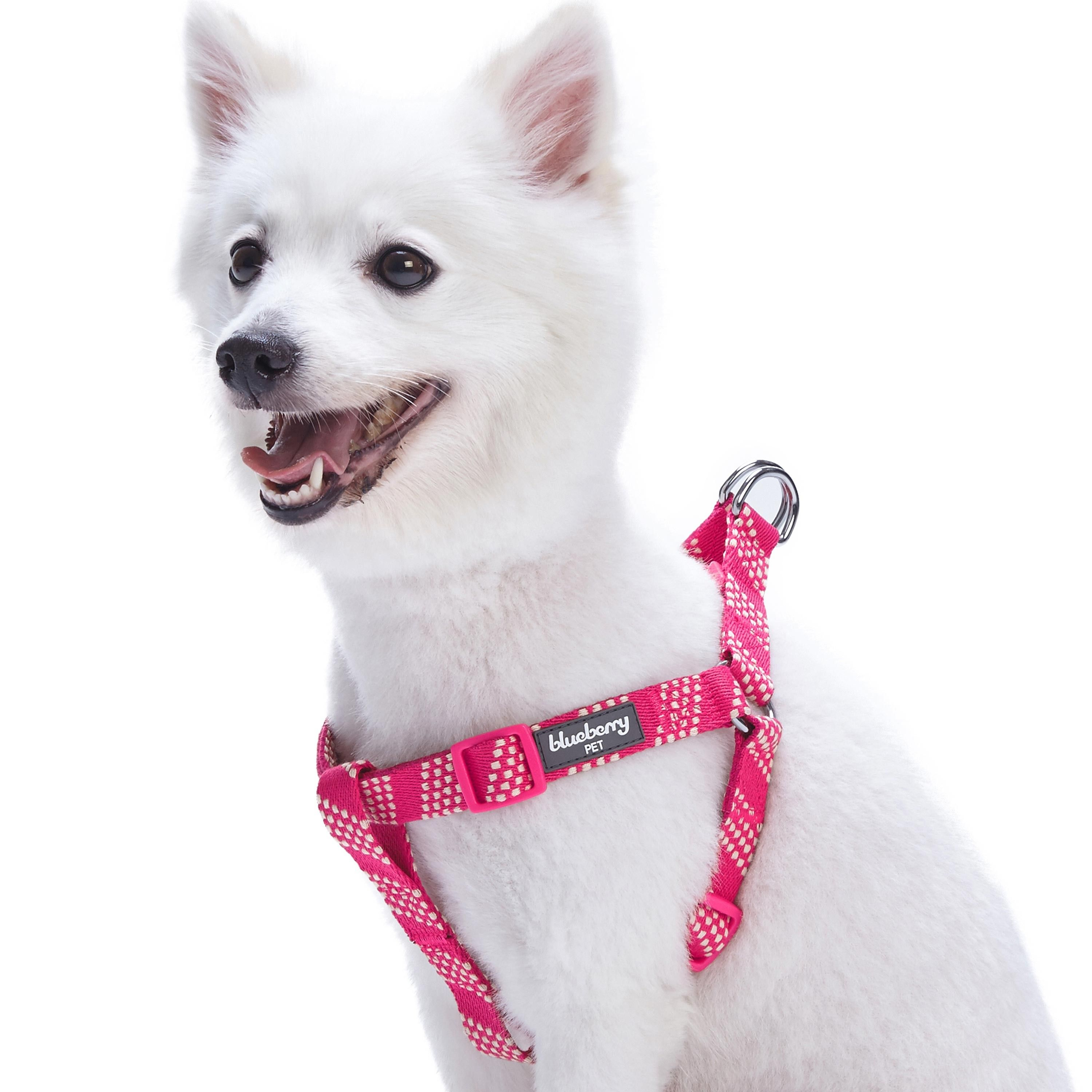 Artisan Crochet Inspired Endless Squares Dog Harness In Virtual