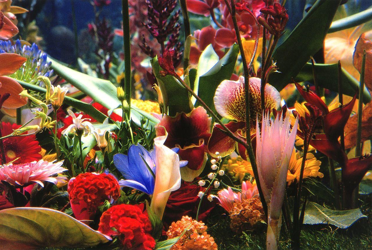 Marc Quinn, Garden, 2000