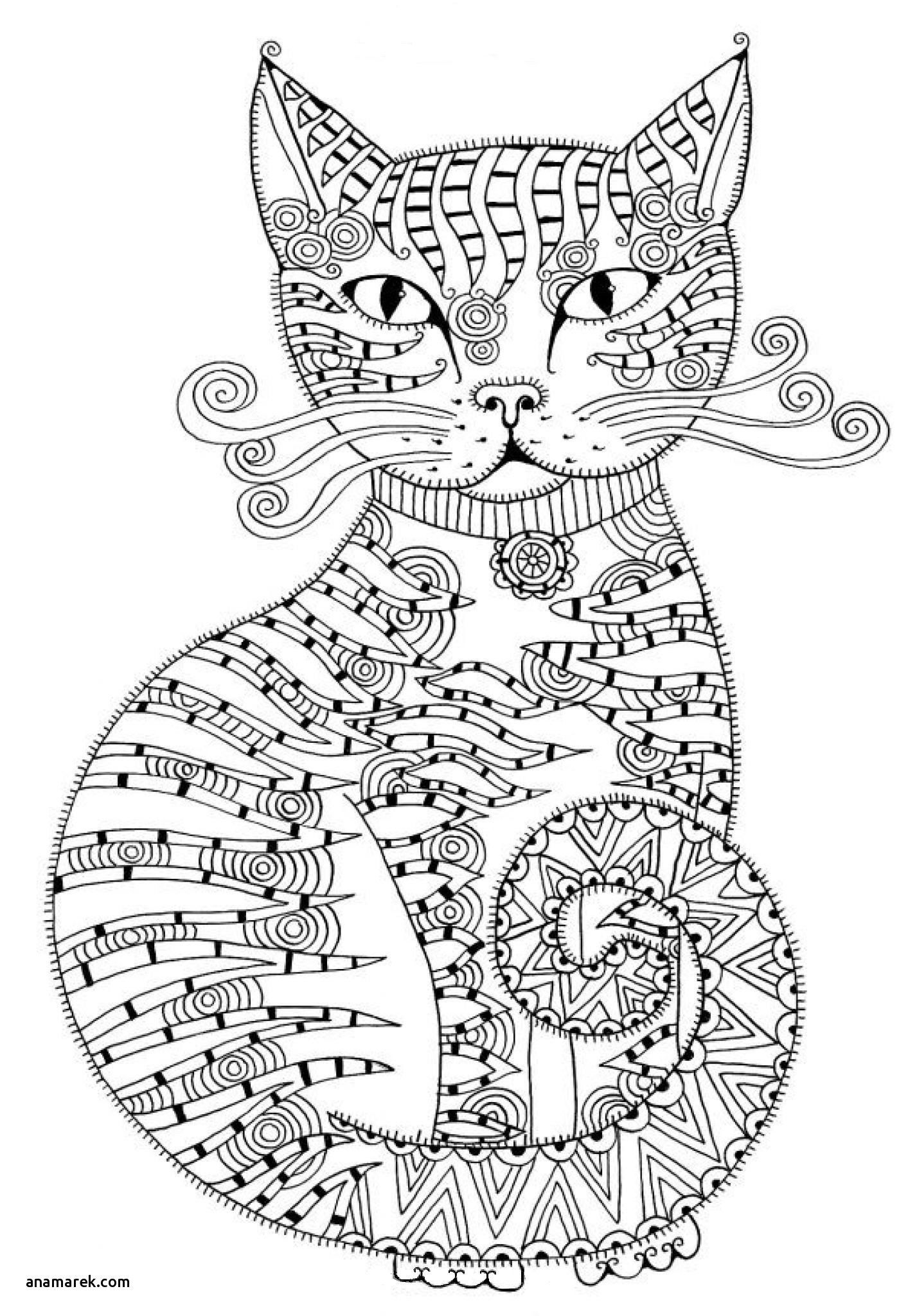Cat Coloring Pages For Adults Lovely Himalayan Cat Coloring Pages Cat Coloring Book Cat Coloring Page Animal Coloring Pages