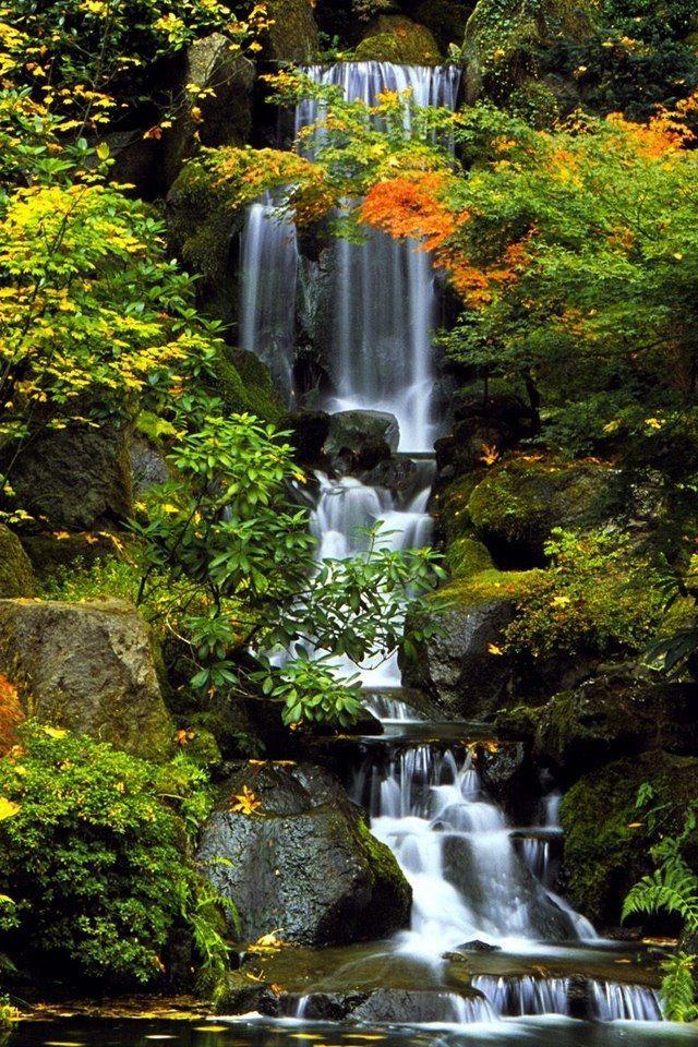 waterfall Cascadas Pinterest Cascadas - Cascadas En Jardines