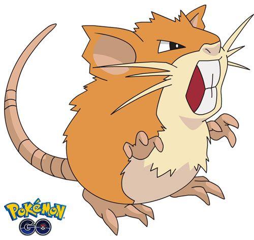 Raticate 1 de Pokémon Go