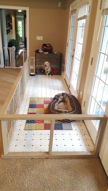 Kundenspezifische Rettungshundestift - #Kundenspezifische #Rettungshundestift #room #animalrescue
