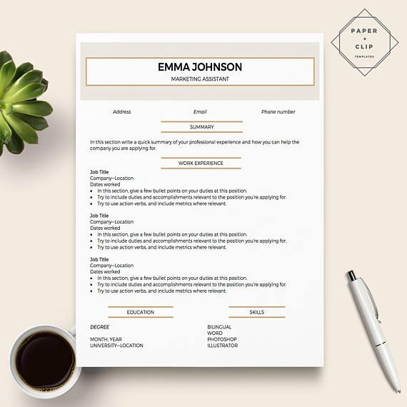 Professional Resume Template for Word   CV Template   2 Page - resume education section