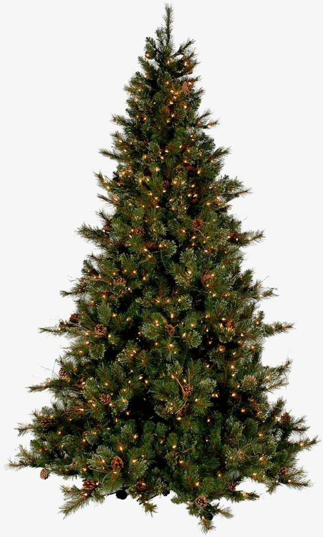 A Christmas Tree in 2020 Christmas tree images, Slim