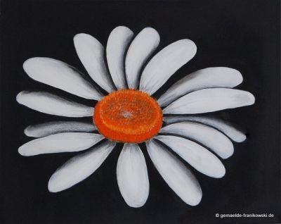 Acrylbild Margerite 50x40cm