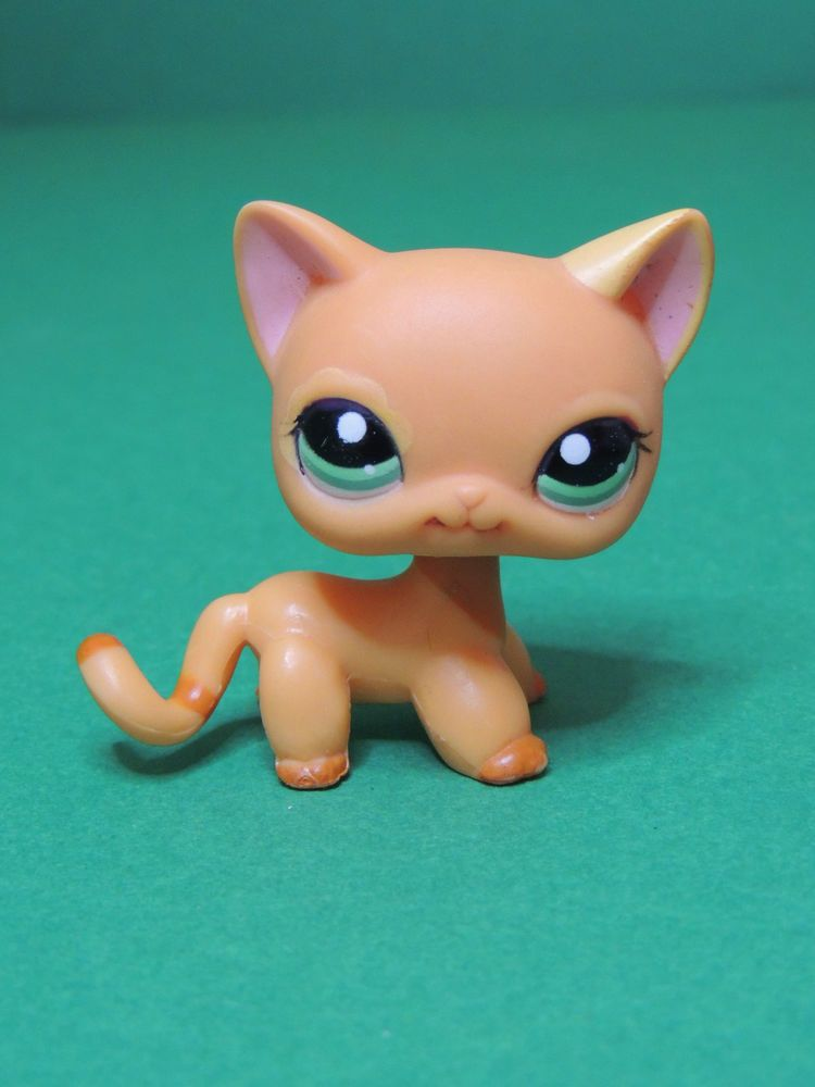 Pin By Olivia Marie Engle On Lps Faves Lps Littlest Pet Shop