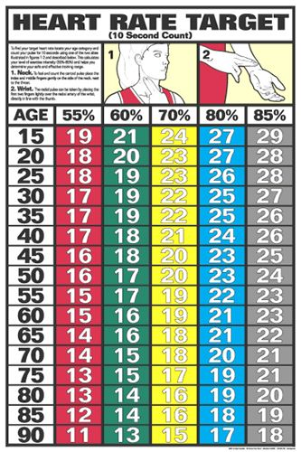 Heart Rate Target Wall Chart Poster  Second Count