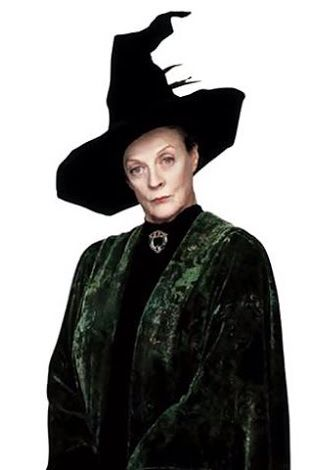 Prof Mcgonagall S Gown Harry Potter Costume Harry Potter Halloween Hogwarts Costume