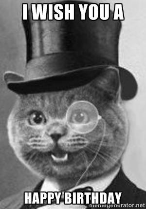 Cat Birthday Meme Google Search Fancy Cats Cat Memes Cute Cat Memes