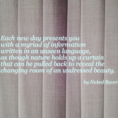 curtain quotes words beautiful words