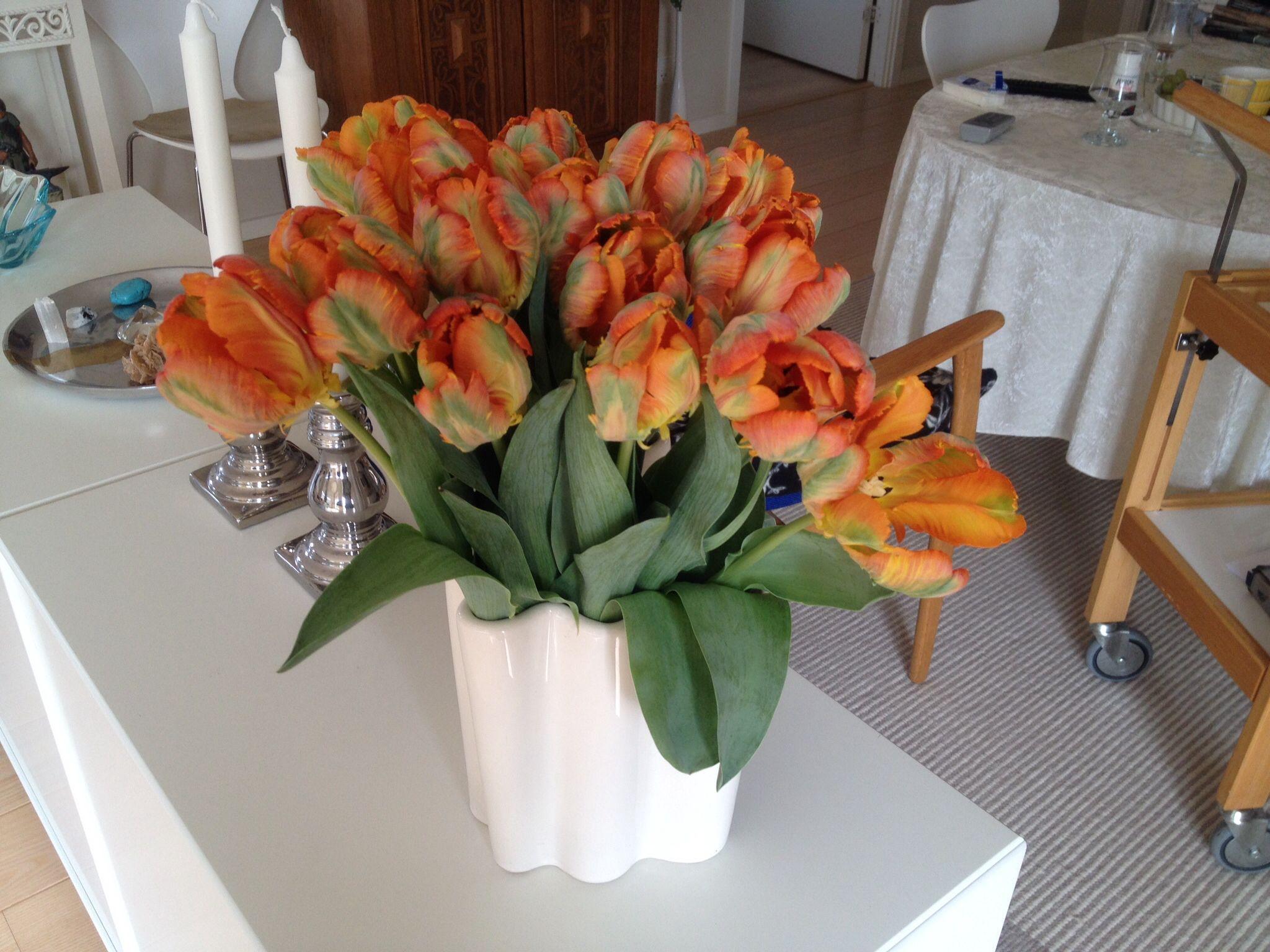 Blomster til Søde Winni