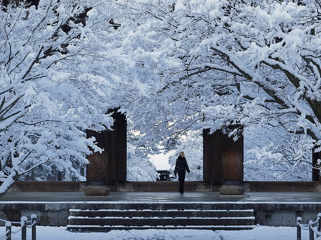 Spring to Winter – Scenes from Kyoto by Yoshi Shimamura