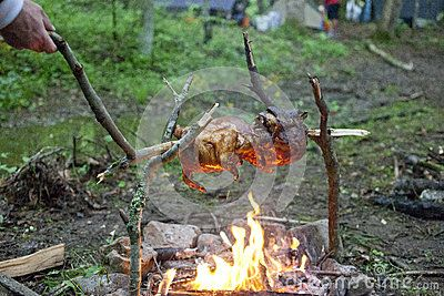 Photo of Roasting Chicken Over A Campfire Stock Photo – Image of clever, preparation: 31110380