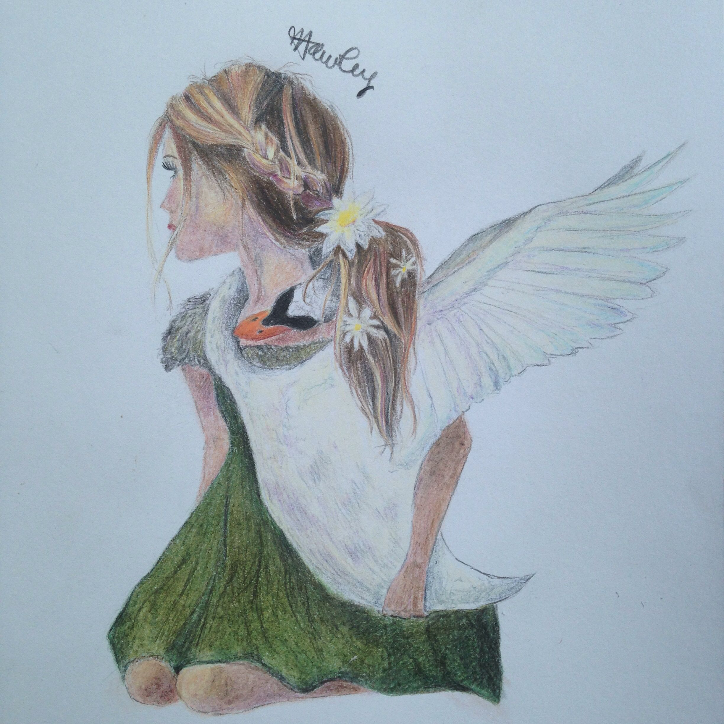 One of my first original drawings. A girl with a swan. I'm not sure what I was trying to create it just came to me. I like to think the girl is wishing she could fly and has asked the swan to help her, and by latching on has almost become a part of her. I hope to do more like this in the future.